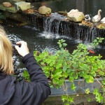 Avondcursus spiegelreflexcamera voor beginners